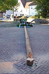Umgesägter Maibaum 2007