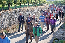 Weinwanderung 2010_4