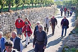 Weinwanderung 2010_5
