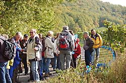 Wanderausfahrt nach Stromberg_5