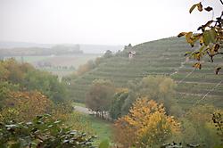 Weinwanderung am 12. Oktober 2013_5